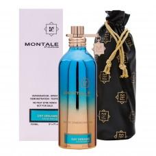 Montale Day Dreams TESTER унисекс 100ml
